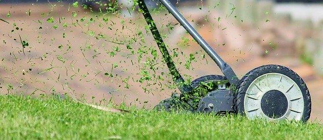 Dokonalý trávník zaručí správně seřízená sekačka
