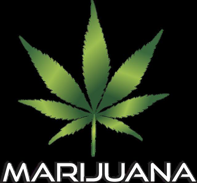 obrázek marihuany v kostičkovém poli